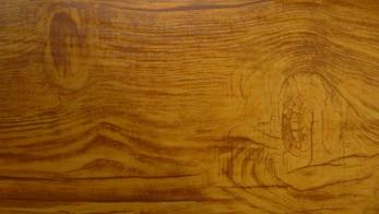 Золотой дуб (Светлое дерево)